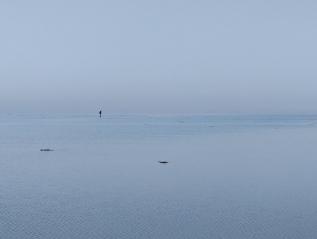 Wadden Sea Photography